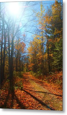Fall Vermont Road Metal Print by Alicia Knust