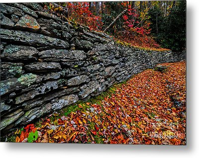 Fall Wall Metal Print