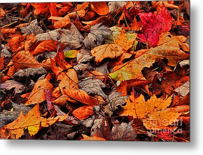Fallen Colors Metal Print