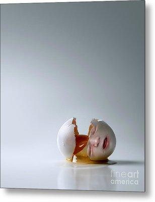 Fallen Egg Metal Print by Diane Diederich