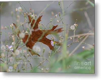 Metal Print featuring the photograph Fallen Oak Leaf Caught In Weeds by Debby Pueschel