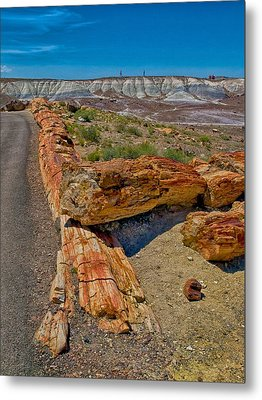 Metal Print featuring the photograph Fallen Trees Of Stone by Rob Wilson