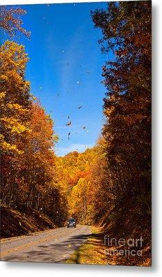Falling Fall Leaves - Blue Ridge Parkway Metal Print by Dan Carmichael