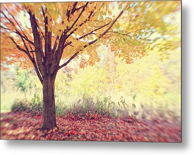 Falling Leaves Metal Print by Heather Green