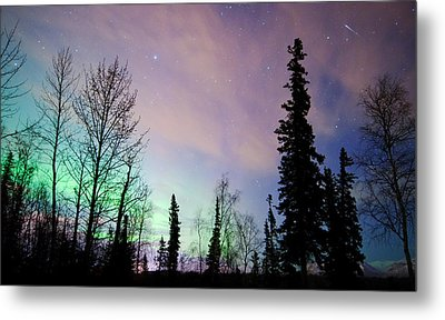 Falling Star And Aurora Metal Print by Ron Day