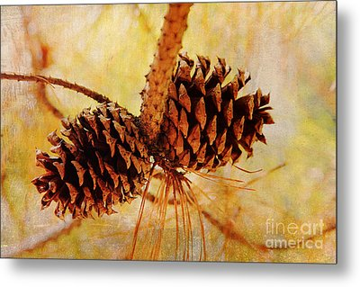 Metal Print featuring the photograph Fall's Golden Light by Trina  Ansel