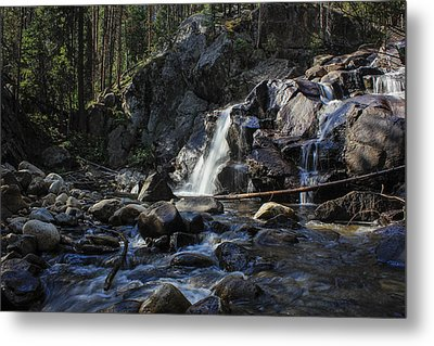 Falls In The Forest Metal Print