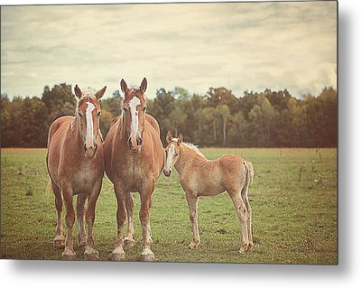 Family Metal Print by Carrie Ann Grippo-Pike