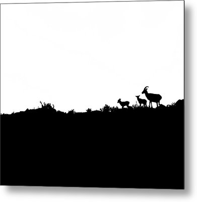 Family Metal Print by Mark  Ross
