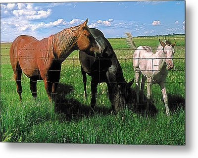 Family Meal Metal Print by Terry Reynoldson
