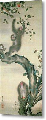 Family Of Monkeys In A Tree Metal Print