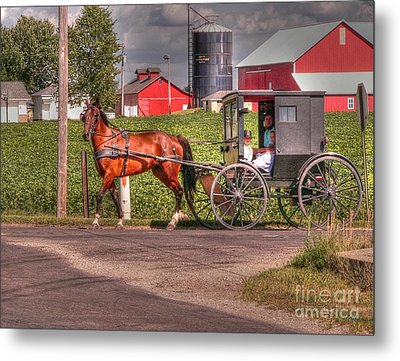 Family Outing Metal Print by David Bearden