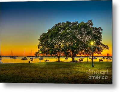 Family Sunset Metal Print by Marvin Spates