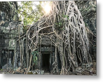 Famous Old Temple Ruin With Giant Tree Roots - Angkor Wat - Cambodia Metal Print by Matteo Colombo