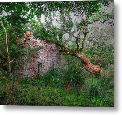 Fanciful Forest Metal Print by Kandy Hurley