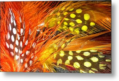 Fancy Feathers Metal Print by Catherine Ratliff