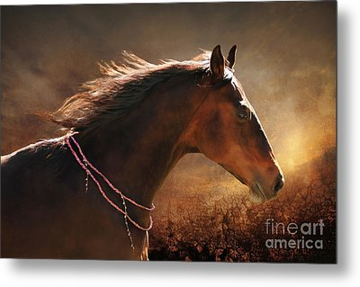 Fancy Free Metal Print by Michelle Twohig
