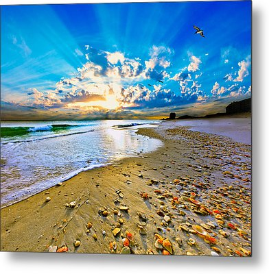 Metal Print featuring the photograph Fantasy Art-birds Flying Into Sunset Over Shell Covered Beach by Eszra