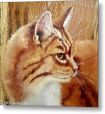 Farm Cat On Rustic Wood Metal Print by Debbie LaFrance