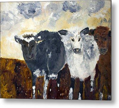 Farm Cows Metal Print by Aleezah Selinger