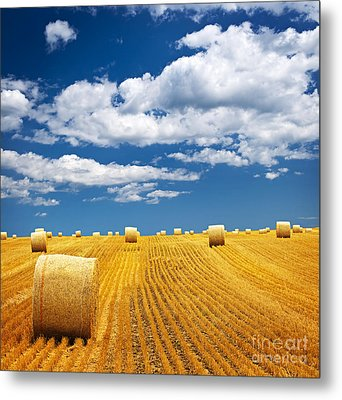 Farm Field With Hay Bales Metal Print by Elena Elisseeva