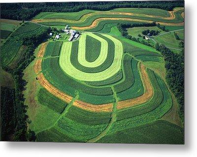 Farm Greens And Hillside Contour Plowing Metal Print by Blair Seitz