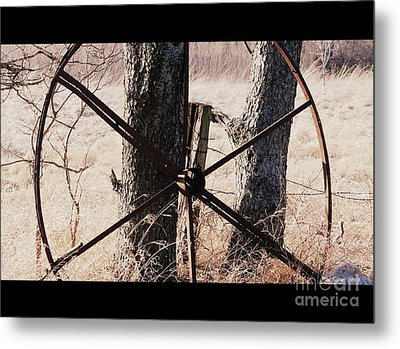 Metal Print featuring the photograph Farm Life by Christie Minalga