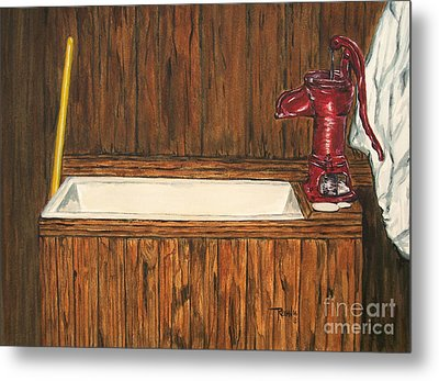Farm Sink Metal Print by Regan J Smith