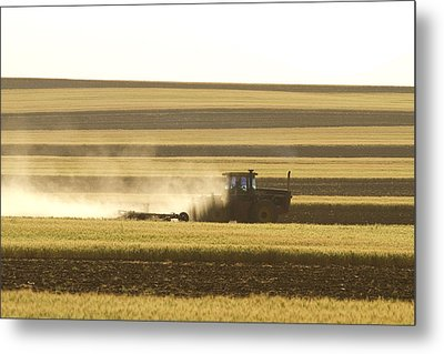 Farmer Working Metal Print by James BO  Insogna