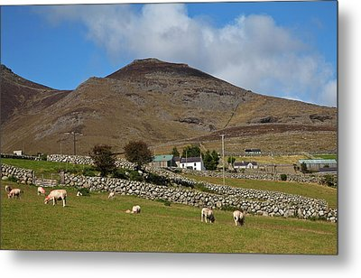Farmland, Stone Walls In The Midste Metal Print