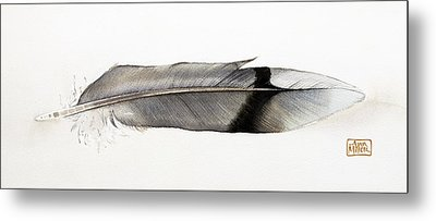 Feather Metal Print by Ann Miller