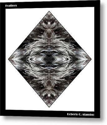 Feathers Metal Print by Roberto Alamino