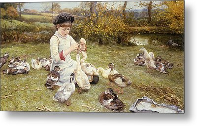 Feeding Ducks Metal Print by Edward Killingworth Johnson