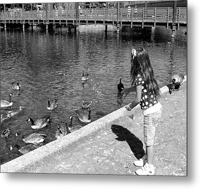 Metal Print featuring the photograph Feeding The Birds by Heidi Manly