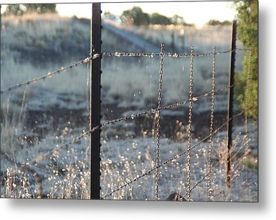 Fence Metal Print by David S Reynolds