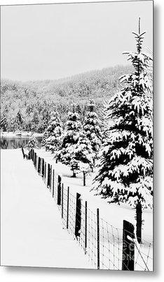 Fence Line Metal Print by Tim Wilson