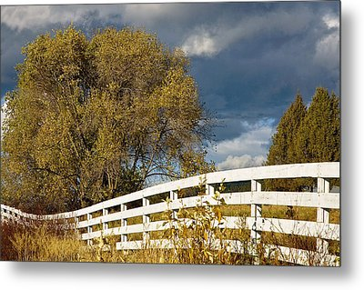 Fence Metal Print by Michele Wright
