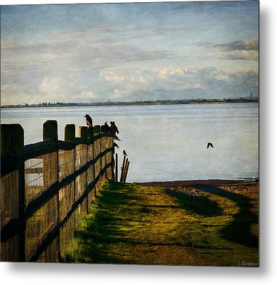 Fence Of Trust Metal Print by Jordan Blackstone