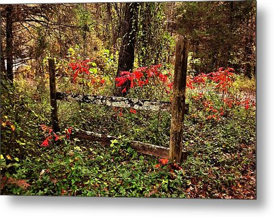 Fence On The Buffalo Metal Print by Marty Koch