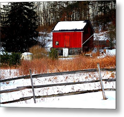 Fenced In  Metal Print by Mary Beth Landis