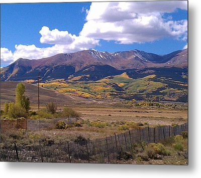 Fenced Nature Metal Print