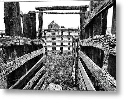 Fenced Metal Print by Ronnie Glover