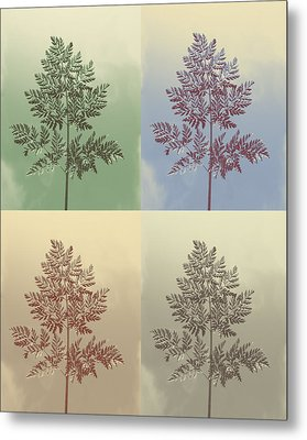 Ferns Times Four Metal Print by Andrea Dale