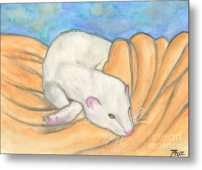 Ferret's Favorite Blanket Metal Print