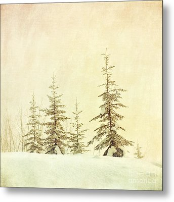 Winter's Mist Metal Print