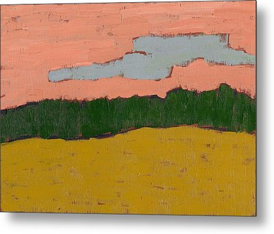 Field At Sunset Metal Print