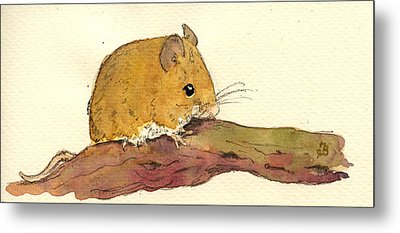 Field Mouse Metal Print by Juan  Bosco
