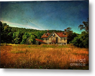 Field Of Broken Dreams Metal Print by Lois Bryan