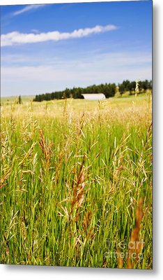 Metal Print featuring the photograph Field Of Brome Grass With Barn by Lincoln Rogers