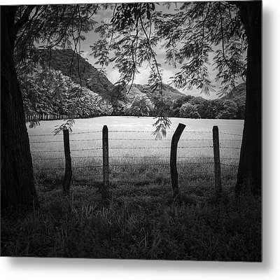 Metal Print featuring the photograph Field Of Dreams by Antonio Jorge Nunes